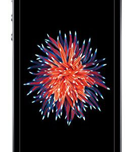 Apple-iPhone-SE-Smartphone-libre-iOS-932-4-12-MP-2-GB-RAM-16-GB-4G-color-negro-0